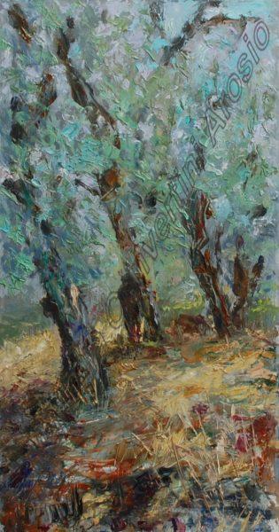 Tre giovani ulivi